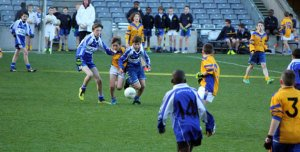 holy-rosary-primary-school-visit-to-croke-park-1490